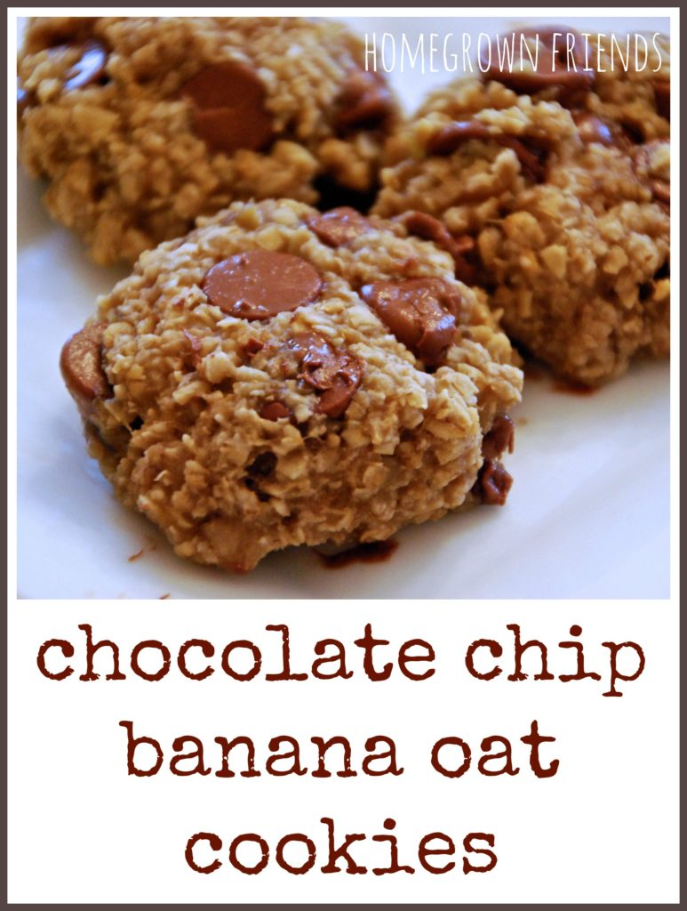 Healthy Chocolate Chip Banana Oat Cookie Recipe - Homegrown Friends
