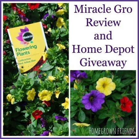 Miracle Gro Review and Home Depot Giveaway