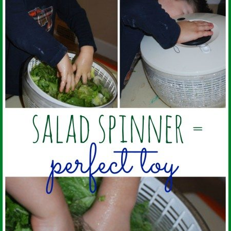 Salad Spinner: The Perfect Toy