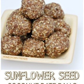 Sunflower Seed Coconut Date Balls