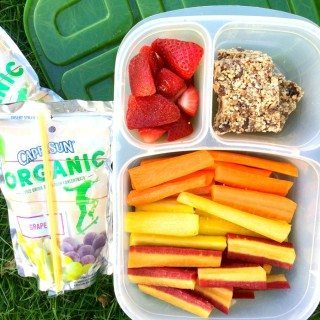 Quick Easy Packable Kid Snacks